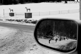 sideview mirror, car, reflection, horse statues, winter snow, social landscape, Lee Friedlander Inspired, social landscape, horses, Hants County, Nova Scotia, Canada, black and white, photo