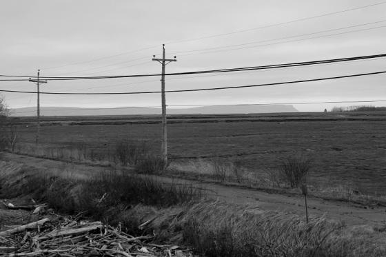 black and white, new Topographics, landscape, Blomidon, social landscape, utility poles,  poles