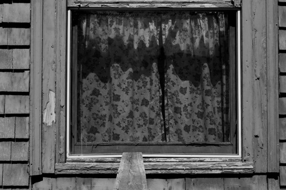 black and white, poetry, window, in remembrance,