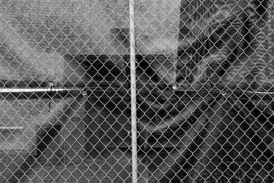 black and white, surreal, fence, photo,