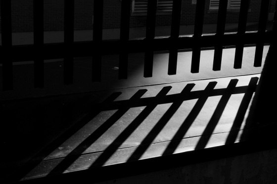 black and white, light, shadows, fence, gate,