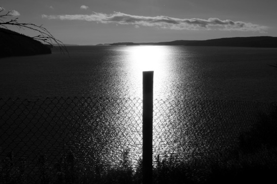 black and white, silhouette, fence post, landscape, Bay of Fundy, Five Islands, Nova Scotia,