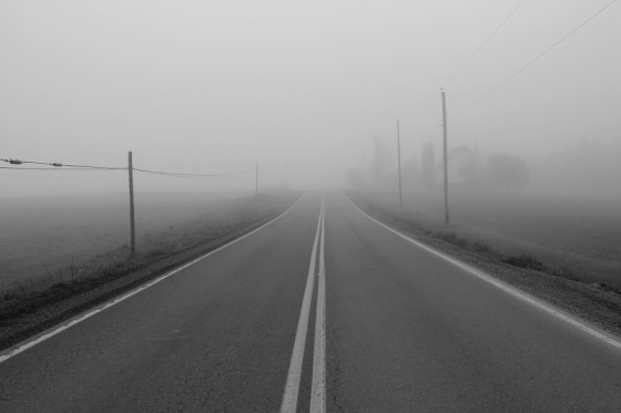 black and white, fog, landscape, morning, June, Spring, Route 14, Hardwood Lands,