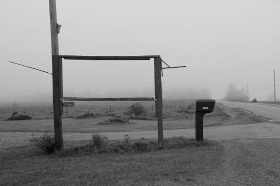 black and white, photo, fog, Hants County,  social landscape,