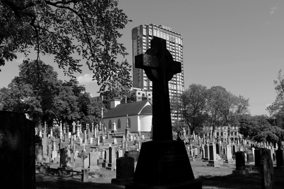 black and white, Holy Cross cemetery, tombstone, grave stone, cemetery, graveyard, Halifax, Nova Scotia, cityscape, Fenwick Tower, photo,