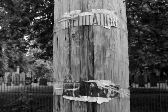 black and white, social landscape, photo, poster, utility pole, meditation, graveyard, Halifax, Nova Scotia,