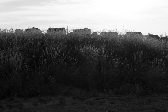 black and white, photo, social landscape, Windsor, Nova Scotia, summer,