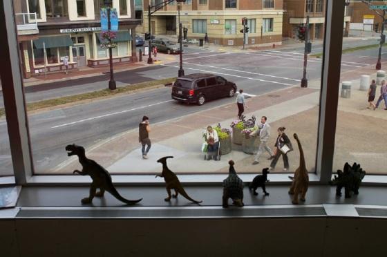 photo, colour, dinosaurs