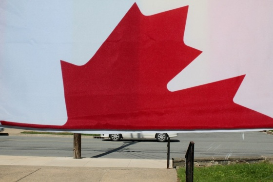 colour, Canada Day, Maple Leaf, flag, divided, Halifax,