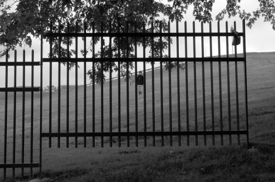 black and white, photo, fence, facade, portrait,