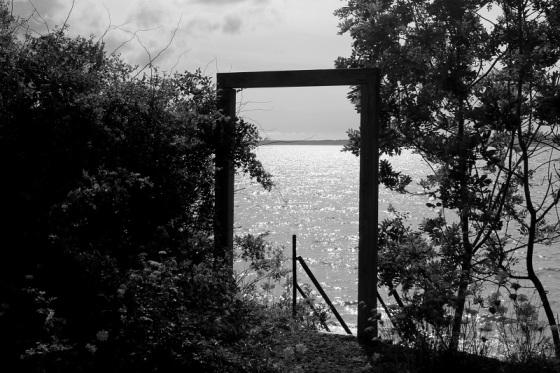 black and white, summer, bay of Fundy, landscape, photo,
