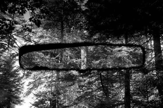 black and white, photo, rearview mirror, forest,