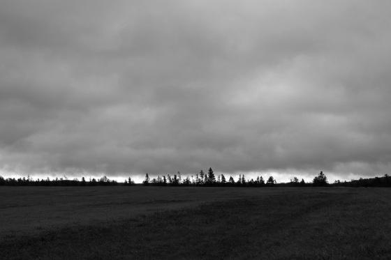 black and white, photo, landscape,