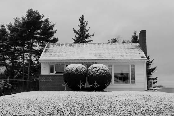photo, black and white, snow, house, December,