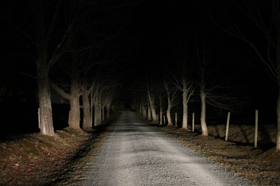 colour, photo, landscape, night, driveway,