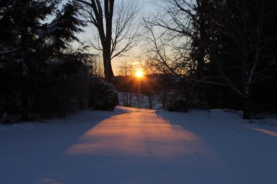 sun, winter,