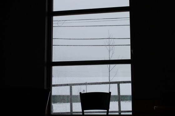 colour, photo, window view, winter,