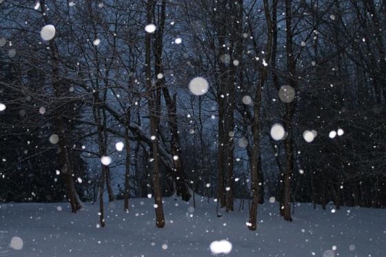 colour, winter, snowflakes,