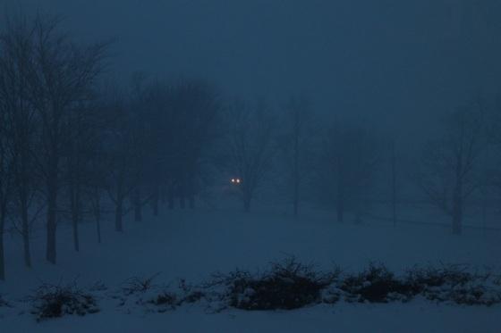colour, winter, storm, twilight,