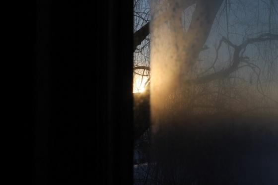 sun, winter, light,