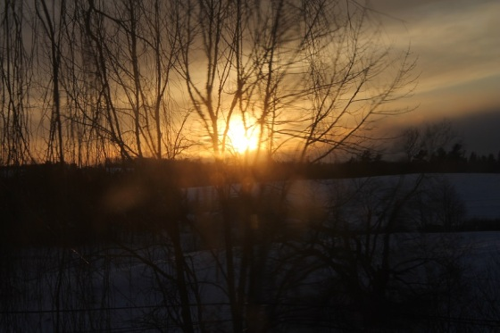 sun, winter, landscape, distortion,