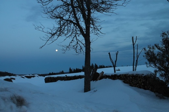 winter, March, full moon, photo, landscape,