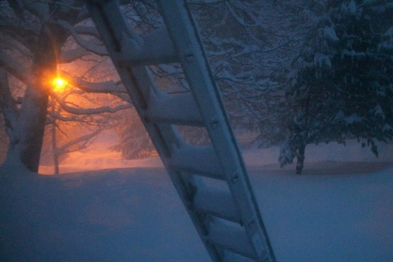 photo, snow storm, winter, Nova Scotia,