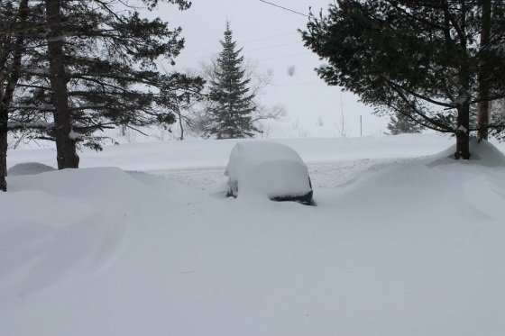 winter, snow, photo,