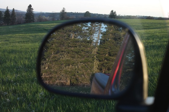 rear view, mirror, Spring light, field,
