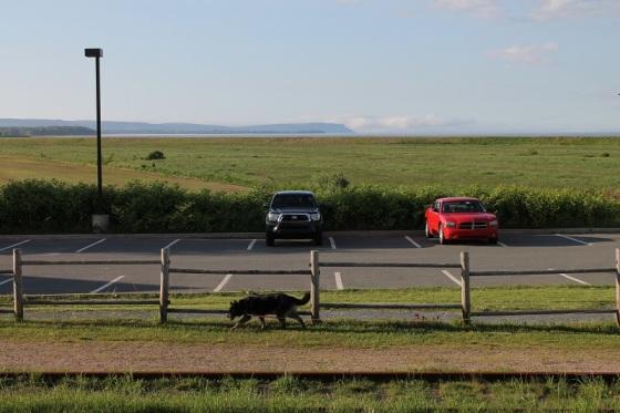 landscape, Blomidon, Wolfville, Nova scotia,