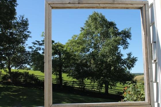 frame, summer, landscape,