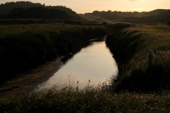 creek, Highway 101, man-altered landscape,
