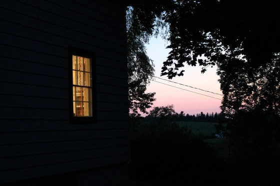 evening, sunset, summer, window,