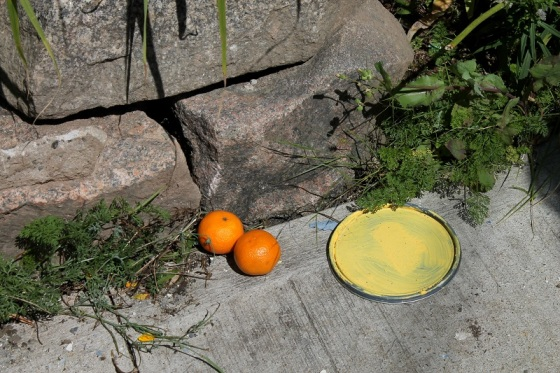 orange, tangerines, sidewalk,
