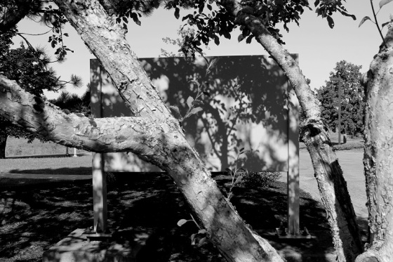 social landscape, shadows, black and white, Lee Friedlander,