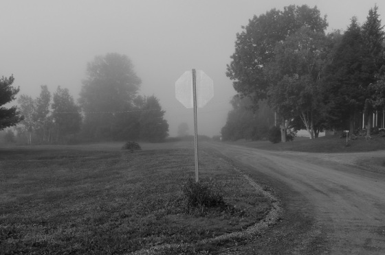 fog, stop sign,