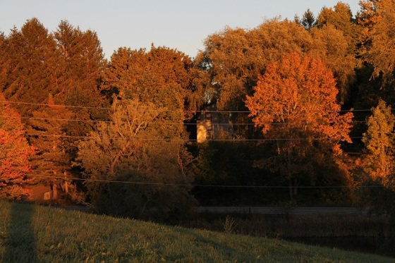 autumn, sunset, home, golden light,