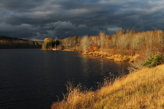lake, autumn, dramatic light,