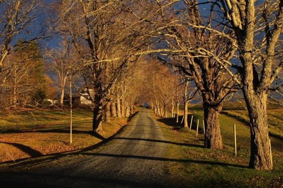 landsacpe, dramatic light, autumn,