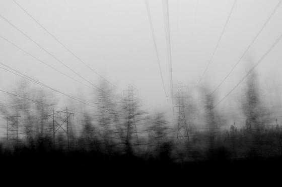 power lines, fog, trees, motion,