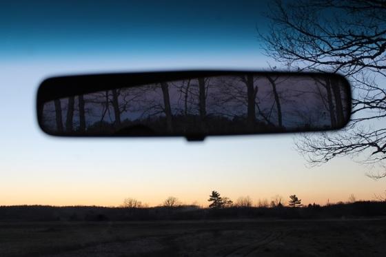 rear view, colour, photo, trees,