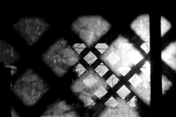 lattice, sunlight, black and white,