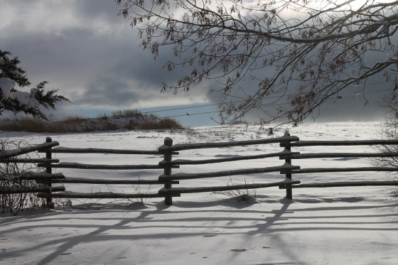 fence, winter, snow, New Year's Day,