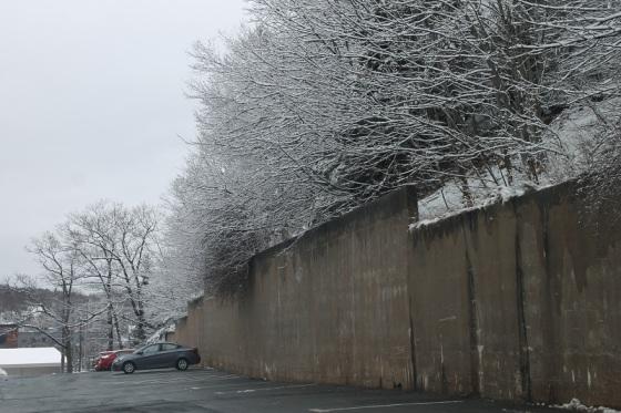 winter, trees, snow,