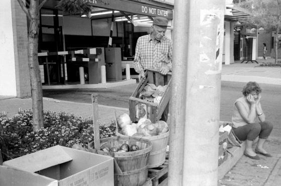 Toronto, 1983, vegetable market,