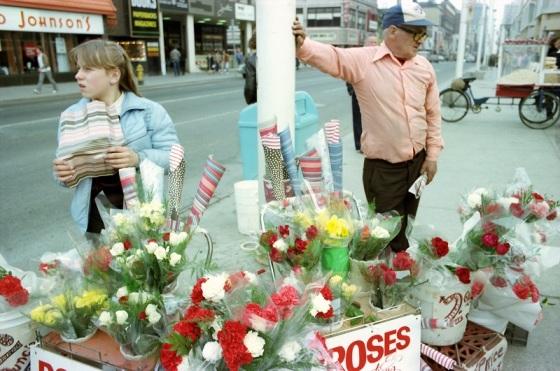 flower seller, Yonge Street, roses, 1982,