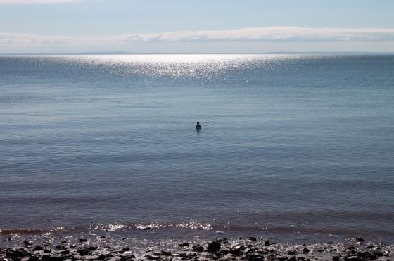 Minas Basin, water, Blomidon, Nova Scotia,