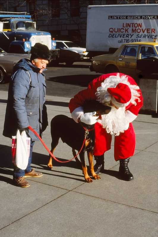 Santa Claus, dog, New York,