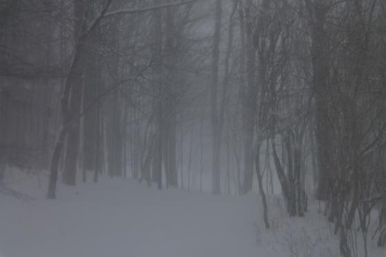 blizzard, storm, snow, Nova Scotia, February, 2017,