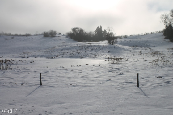 Nova Scotia, winter, field,